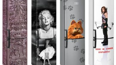 Цікаві факти про холодильник
