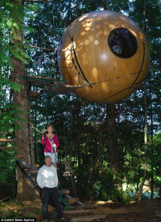 Photo of Free Spirit Spheres — перший у світі готель на дереві
