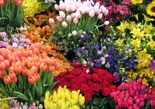 Цікаво про квіти від flowerstore.org.ua
