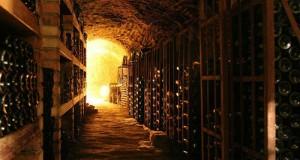 Стародавні галли навчилися виноробству у етрусків