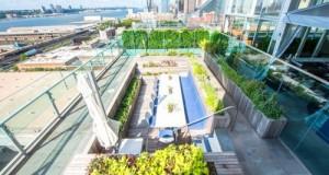 На даху готелю з'явився незвичайний ресторан з басейном і фермою (6)