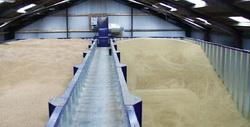 Photo of Як правильно зберігати зерно