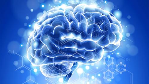 Photo of Чого людський мозок не знає сам про себе