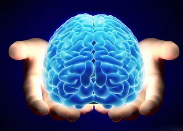 Photo of Стародавні віруси зробили мозок людини розумнішим, з'ясували вчені