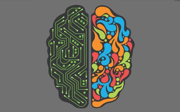 Photo of Неврологи розсекретили генетику розмірів мозку