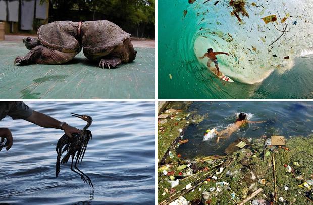 Photo of 25 жахливих наслідків забруднення, які змусять вас замислитися