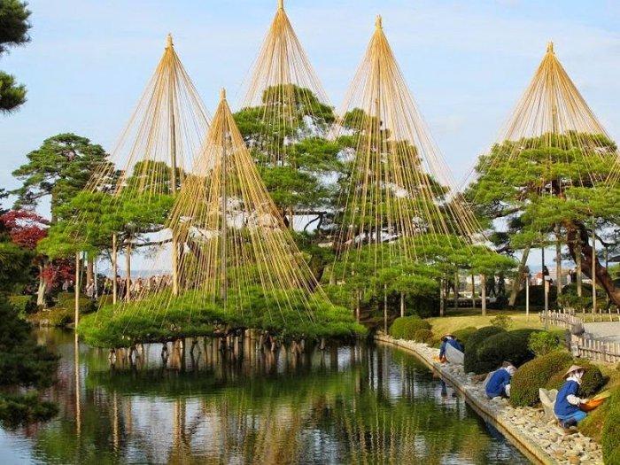 Photo of Юкицури – японські сніготримачі дерев