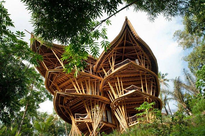 Photo of Бамбукові будинки Елори Харді (Elora Hardy)