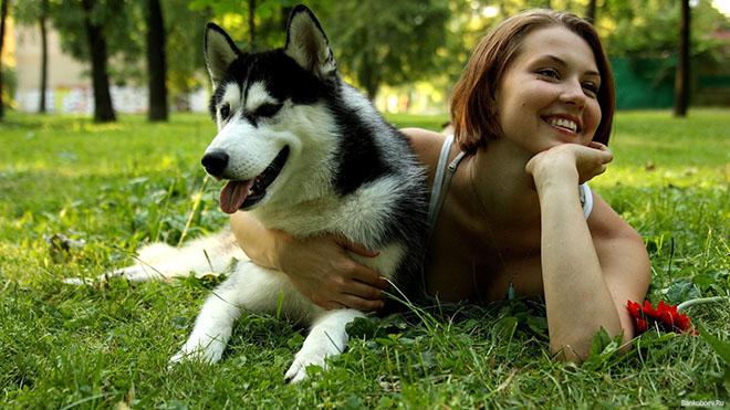 Photo of Люди мають схожий з собаками рівень гормонів