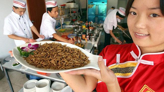 Photo of Вчені з Британії мають намір навчити людей вживати в їжу комах