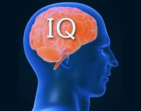 Photo of Останні сто років у людей зростає IQ