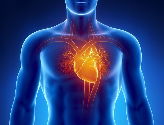 Photo of Як знизити ризик інсульту та інфаркту