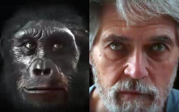 Photo of Еволюція людського обличчя за 6 мільйонів років