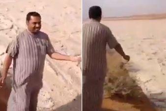 Photo of Крижана річка посеред Іракської пустелі (відео)