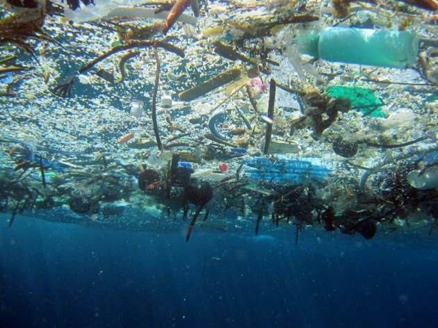 Photo of Біорозкладаний пластик теж шкідливий для океану
