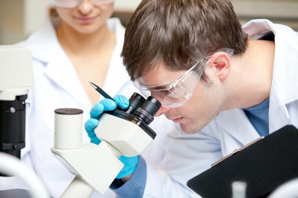 Photo of З'явився новий перев'язувальний матеріал на основі альгінату і хітозану