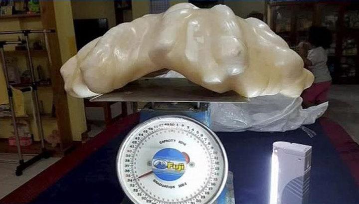 Photo of На Філіппінах знайшли величезну перлину (фото)