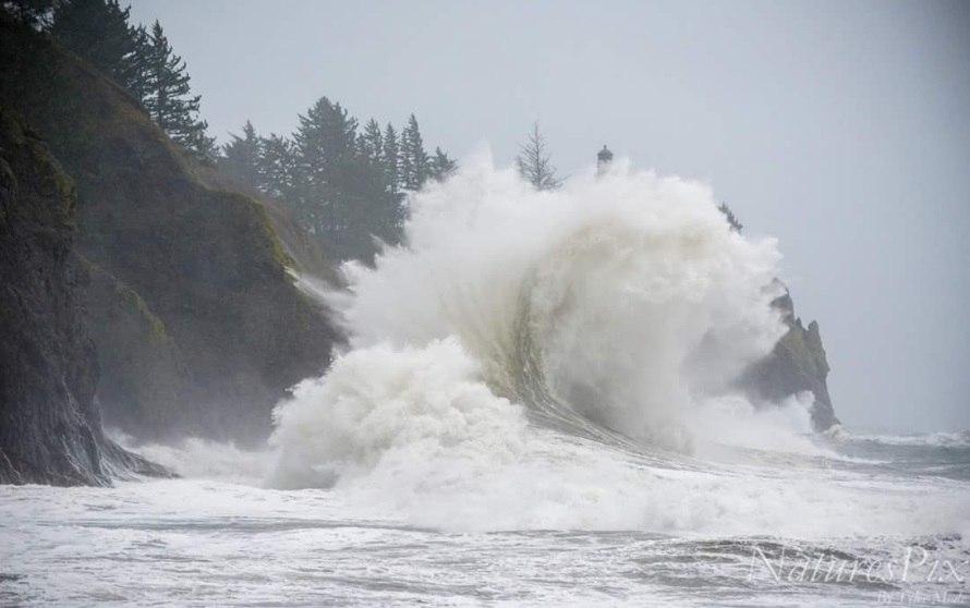 Photo of Потужний шторм обрушився на північний захід США (фото)