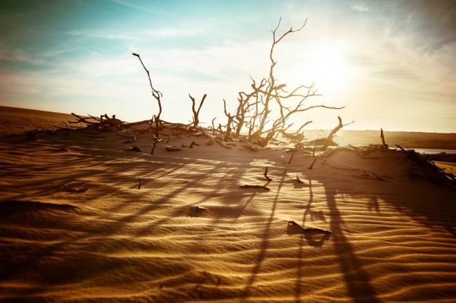 Photo of Концентрація CO2 і Сонце призведуть до небаченого потеплінню