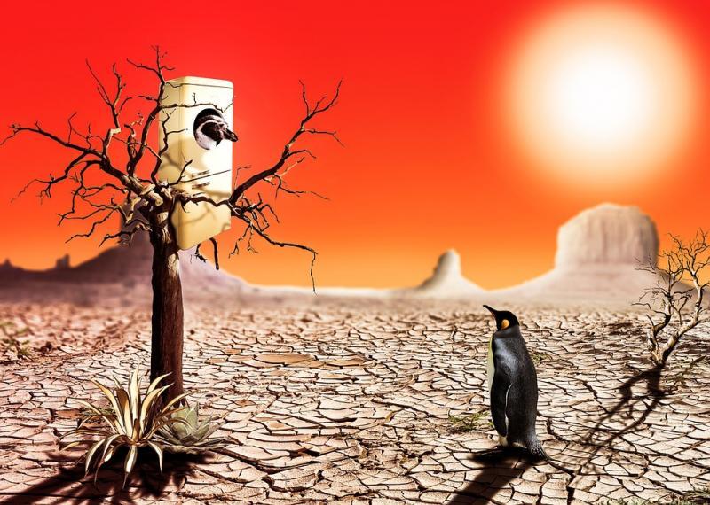 Photo of Вчені: Холодильники негативно впливають на атмосферу Землі