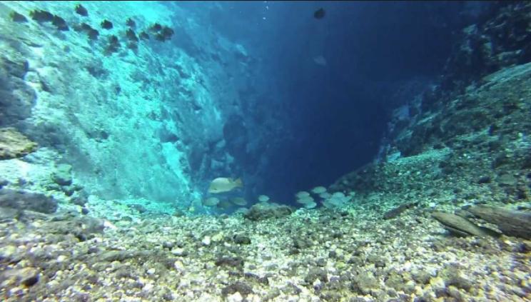 Photo of Вчені розповіли про філіппінські печери, розташовані під кришталево чистою річкою