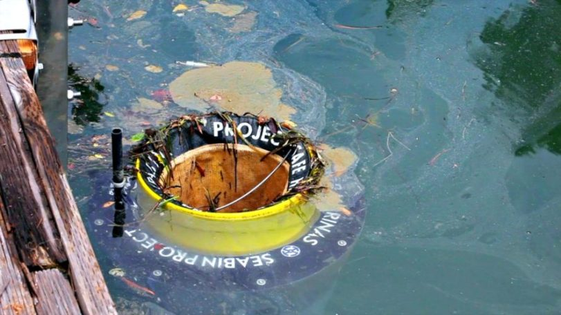 Photo of У Великобританії встановили перший морський сміттєзбірник для очищення моря від пластику