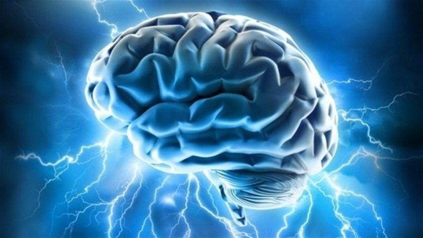 Photo of Вчені створили мініатюрний прилад для вивчення мозку