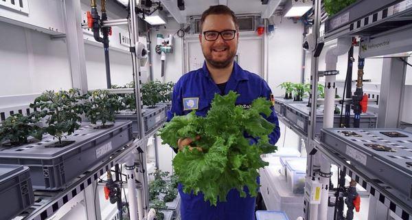 Photo of Як виростити врожай без ґрунту і сонця?