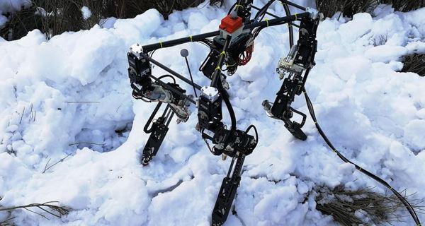 Photo of Робот сам навчився ходити по снігу, льоду і камінню