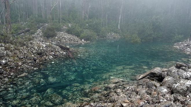 Photo of Зникаюче озеро в Австралії знову повернулося