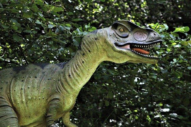 Photo of Вчені з'ясували, як великі динозаври висиджували свої яйця