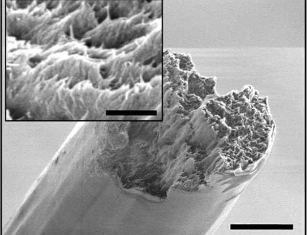 Photo of Новий найміцніший біоматеріал
