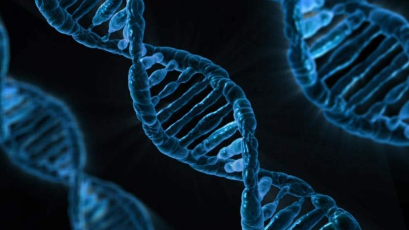 Photo of Вчені: Генетична помилка зробила мозок людей великим і вразливим
