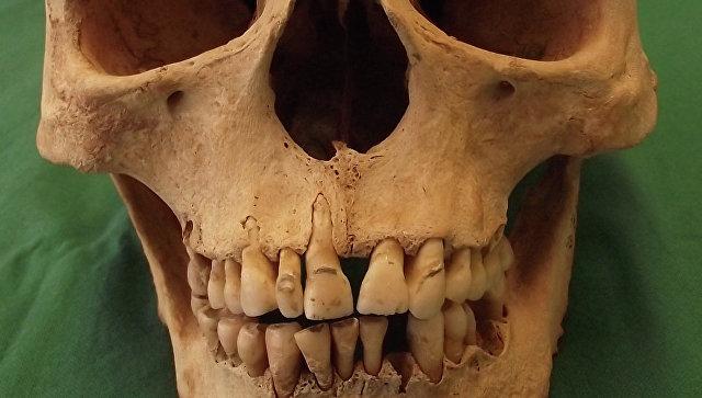 Photo of Спростовано міф про «погані зуби» середньовічних європейців