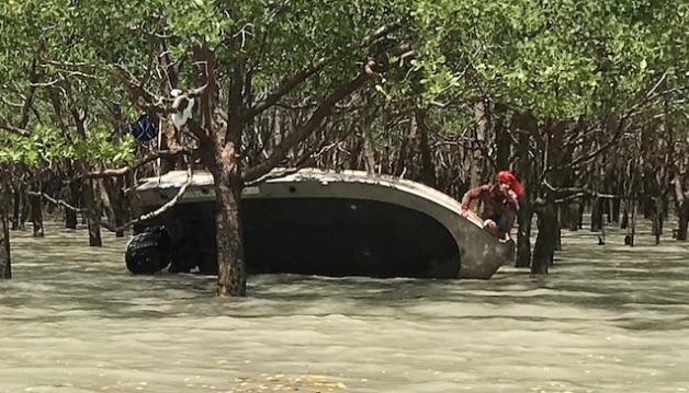 Photo of Рибалки провели дві доби на дереві, рятуючись від крокодила