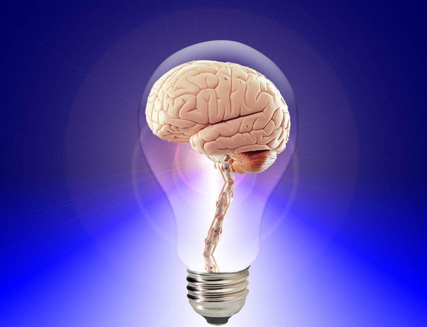 Photo of Вчені встановили фактори, що впливають на працездатність мозку у літніх людей