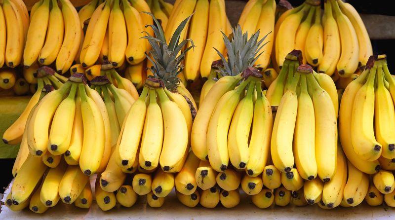 Photo of Учені допустили швидке зникнення бананів з лиця Землі