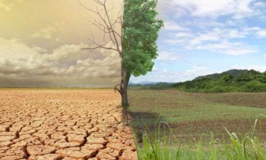 Photo of Шведські вчені запропонували 4 способи врятувати планету