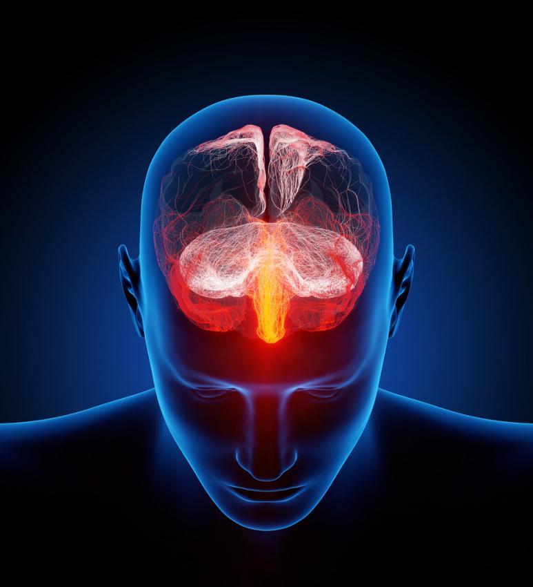 Photo of Психіатр розповів, як захистити мозок від вікових хвороб