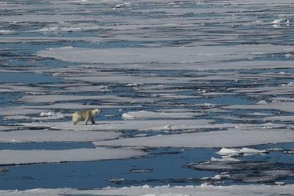 Photo of За полярним колом встановлений температурний рекорд