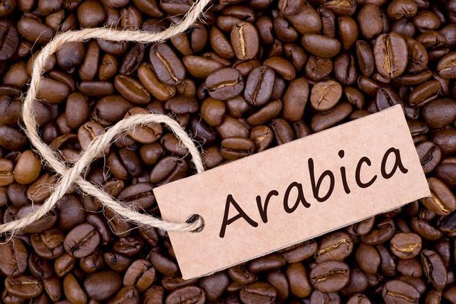 Арабіка