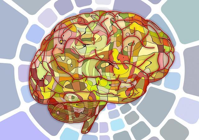 Photo of Вчені виявили область мозку, що зберігає в одному місці всі емоції
