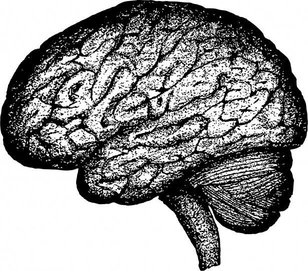 Photo of Вчені помітили перевагу в роботі мозку у психопатів
