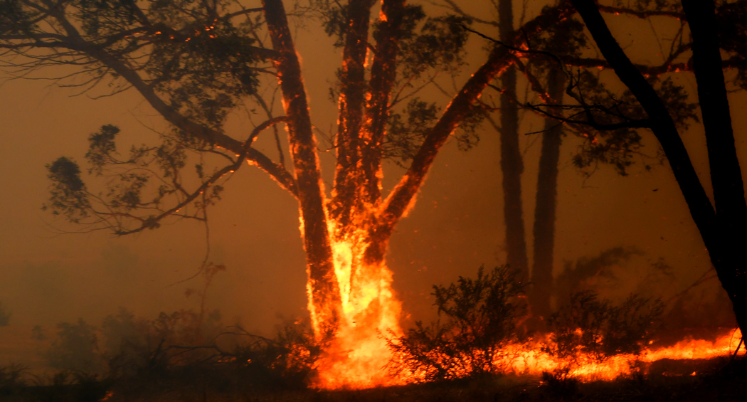 Photo of Пожежі в Австралії досягли площі 4,5 тис. кв. км