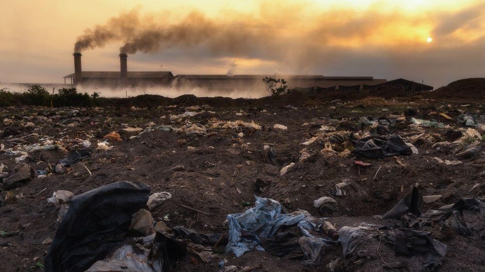 Photo of Забруднення навколишнього середовища скорочує населення