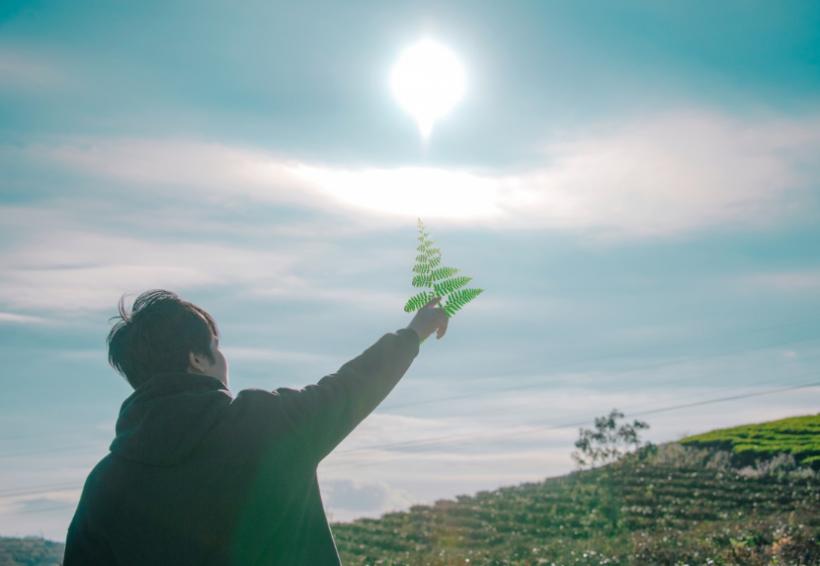 Photo of Експерти розповіли, як компенсувати недолік сонячного світла
