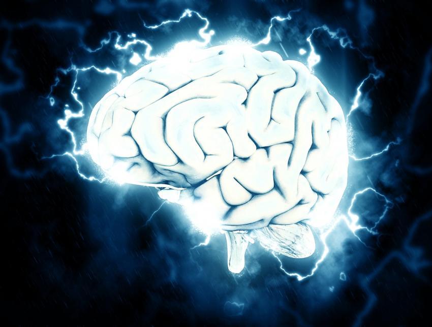 Photo of Фахівці заявили, що жирна їжа погіршує роботу мозку