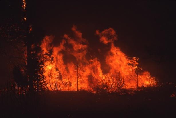 Photo of Британські кліматологи напророкували долю Австралії, яка потерпає від пожеж, всьому світу