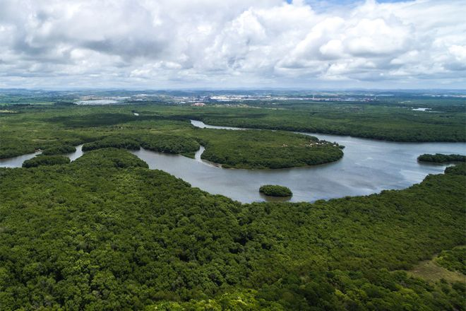 Photo of Втрата лісів Амазонки призвела до різкого збільшення кількості хворих малярією