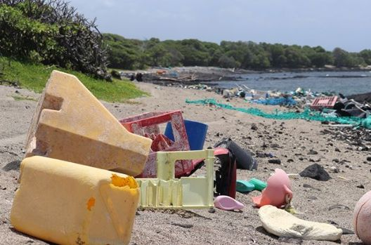 Photo of Райський пляж Гаваїв перетворився на смітник